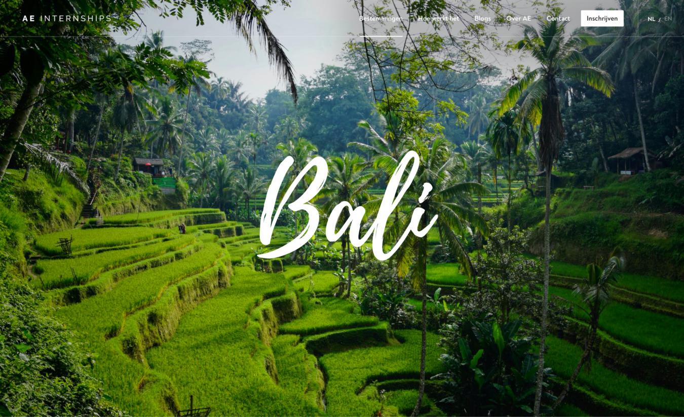 AE internships op Bali